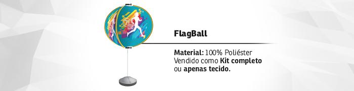Flagball